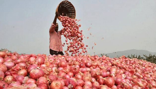 onion_price.png
