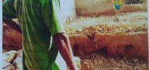 উখিয়ায় সরকারি খাস জায়গা জবর দখল করে দালান নির্মাণ করা হচ্ছে !