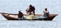 টেকনাফের নাফনদীতে মাছ ধরার নিষেধাজ্ঞা ৪ বছরেও জেলেদের ভাগ্য খুলেনি ; মাদক কারবারীদের পোয়াবারো